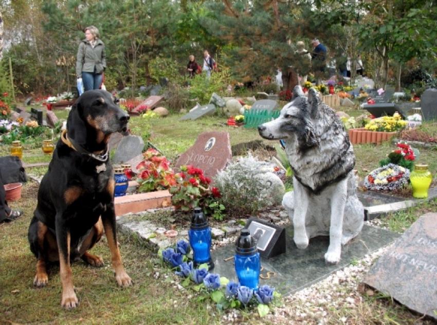 Liguria - Animali e padroni potranno essere seppelliti insieme