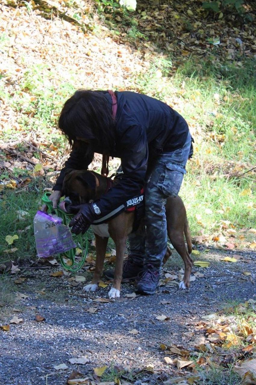 Daniela ed Elvira: grazie al mantrailing si divertono e aiutano gli animali scomparsi