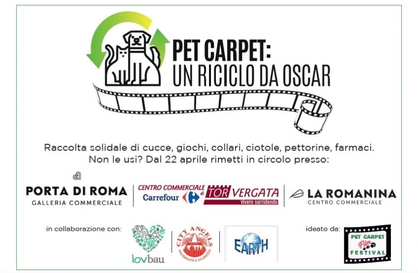 Pet Carpet: un riciclo da Oscar - Continua la raccolta solidale a Roma