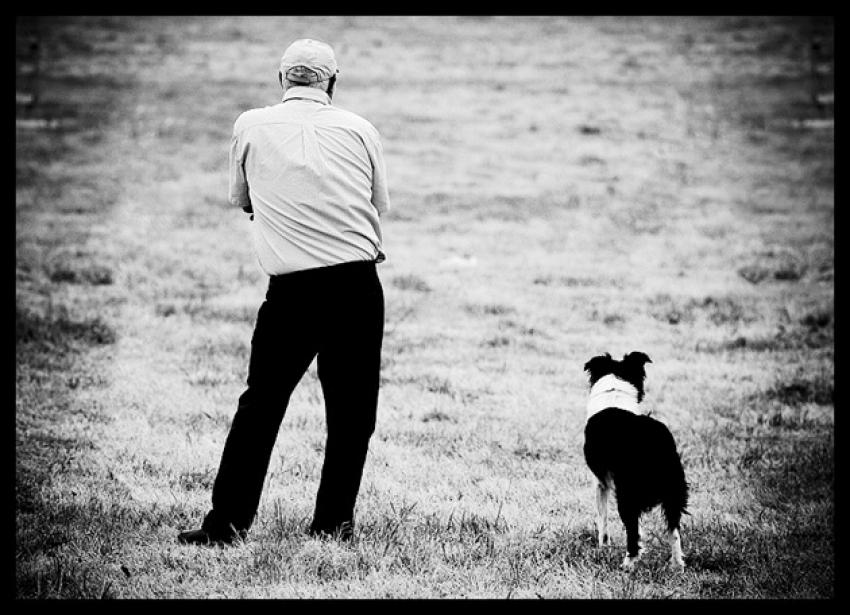 """""""E l'uomo incontrò il cane"""" di Konrad Lorenz"""