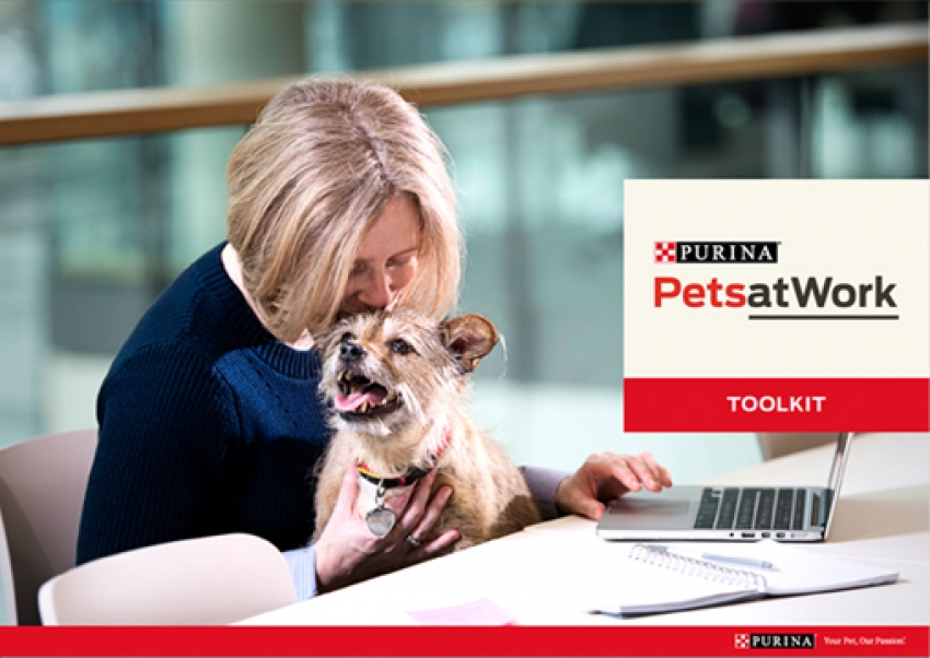 Purina ed il progetto Pets at work: cani in ufficio, si può!
