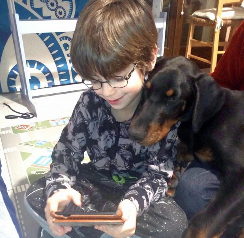 Vivere con un cucciolo di Dobermann: costruzione di un amore
