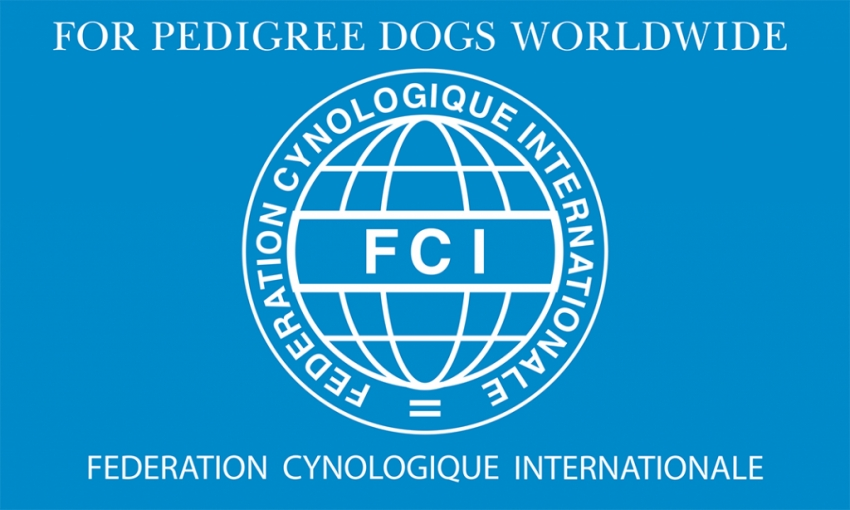 Ecco le ultime due razze riconosciute dalla Federazione Cinologica Internazionale (FCI)