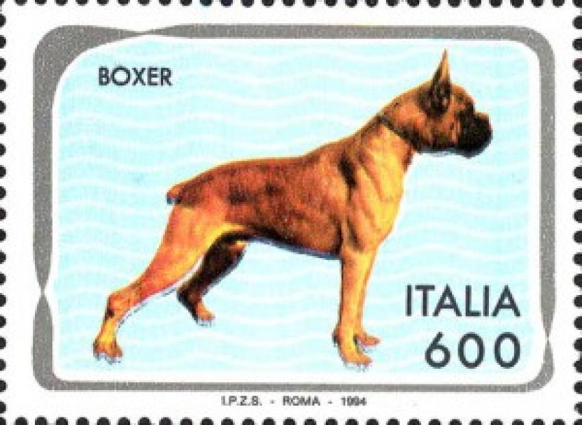 Francobolli e cani: dal primo emesso al più costoso